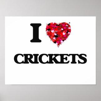 I love Crickets Poster