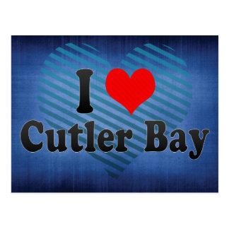 I Love Cutler Bay, United States Postcard