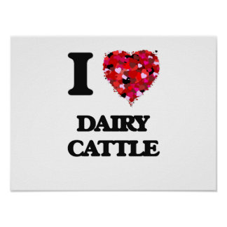 I love Dairy Cattle Poster