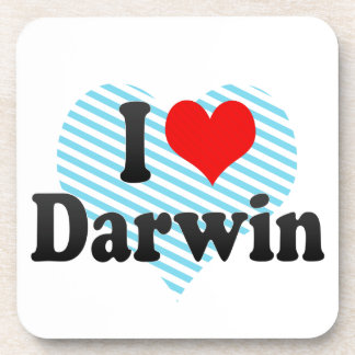 I love Darwin Coaster