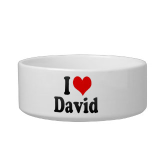 I love David Cat Food Bowl