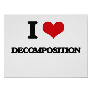 I love Decomposition Poster