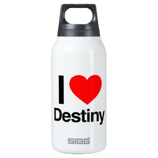 i love destiny 10 oz insulated SIGG thermos water bottle