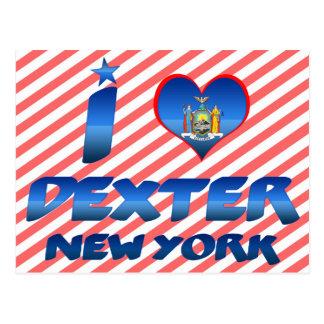 I love Dexter, New York Postcard