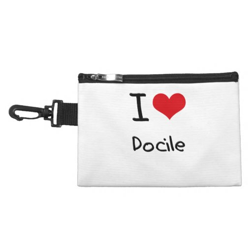 I Love Docile Accessories Bags