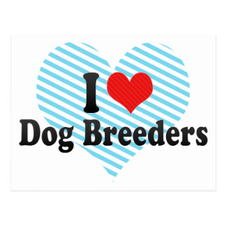 I Love Dog Breeders Post Cards