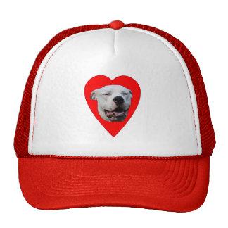 I Love Dogo Argentinos Trucker Hat