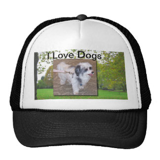 I Love Dogs Hat