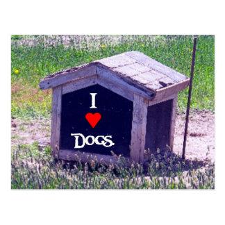 I Love Dogs Postcard
