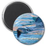 I Love Dolphins Magnet Refrigerator Magnets