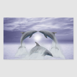 I love dolphins rectangular sticker