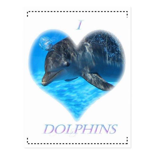 i love dolphins tarjetas postales