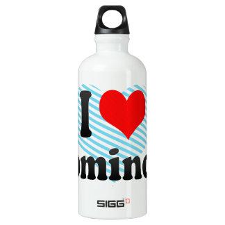 I love Dominoes Water Bottle
