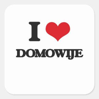 I love Domowije Square Sticker