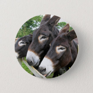 I Love Donkeys! Button