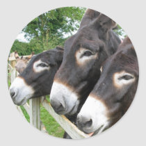 I Love Donkeys! Classic Round Sticker
