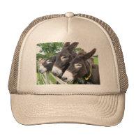 I Love Donkeys! Hat