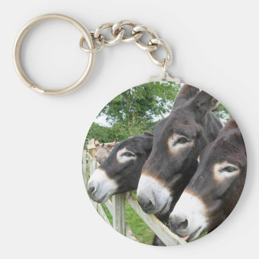 I Love Donkeys! Keychains