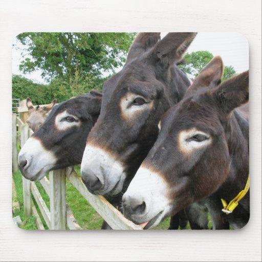 I Love Donkeys! Mouse Mat