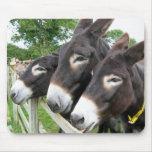 I Love Donkeys! Mousepad