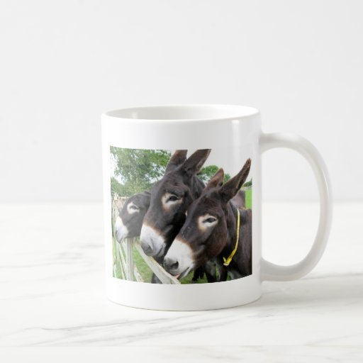 I Love Donkeys! Coffee Mug