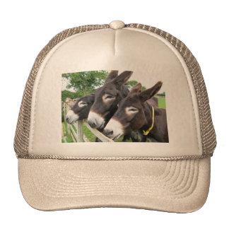 I Love Donkeys! Trucker Hat