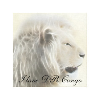 I love DR Congo Africa Canvas Print