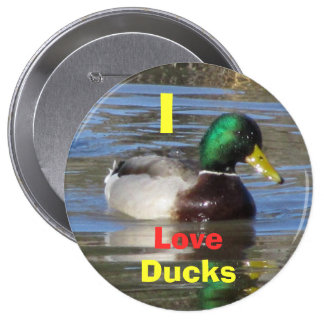 I Love Ducks Button