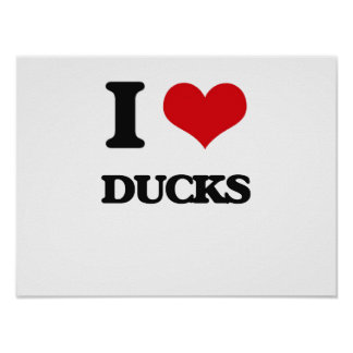 I love Ducks Posters