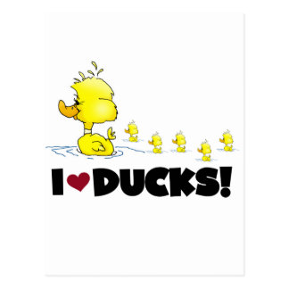 I Love Ducks Tshirts and Gifts Postcard