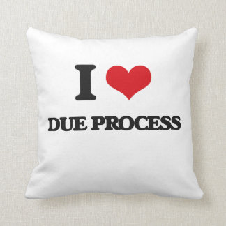 I love Due Process Throw Pillows