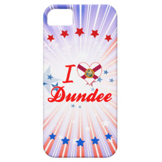 I Love Dundee, Florida iPhone 5 Cases