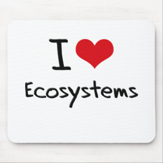 I love Ecosystems Mouse Pad