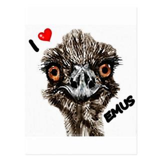I LOVE EMUS POSTCARD