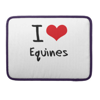 I love Equines MacBook Pro Sleeves