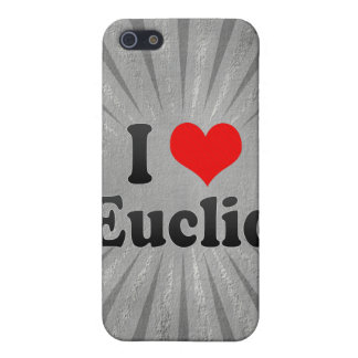 I Love Euclid, United States Case For iPhone 5