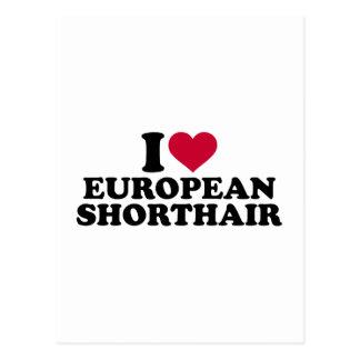 I love European Shorthair cat Postcard