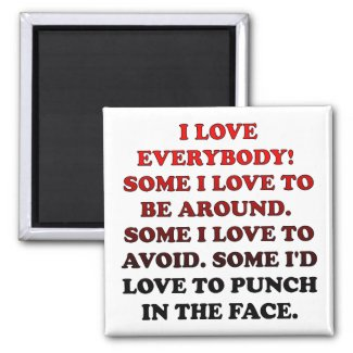 I Love Everybody Funny Fridge Magnet Refrigerator