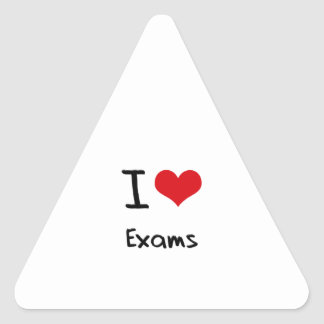 I love Exams Triangle Sticker
