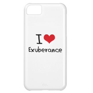 I love Exuberance iPhone 5C Case