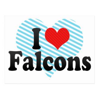 I Love Falcons Postcard