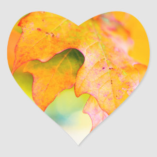 """I Love Fall"" Stickers - Autumn Leaves, Delightful"