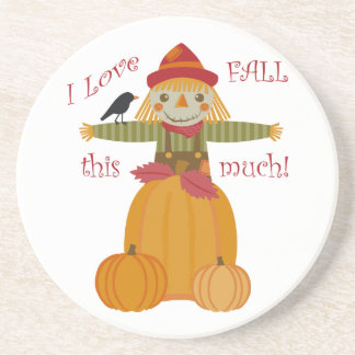 I Love Fall This Much! Coasters