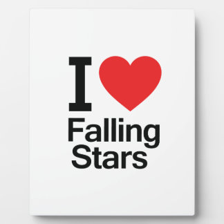 I Love Falling Stars Display Plaque