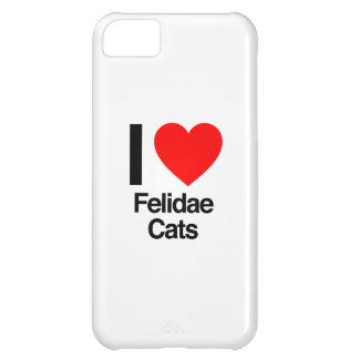i love felidae cats case for iPhone 5C