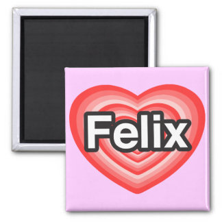 I love Felix. I love you Felix. Heart 2 Inch Square Magnet