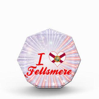 I Love Fellsmere Florida Award