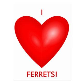 I Love Ferrets Postcard