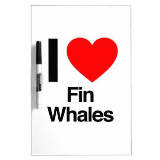 i love fin whales dry erase whiteboards
