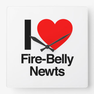 i love fire-belly newts square wallclocks
